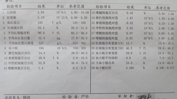血常规报告单