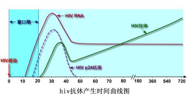 hiv抗体产生时间