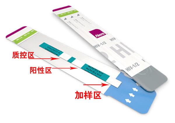 雅培hiv试纸结构图示.jpg